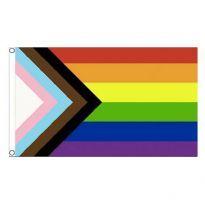 Drengenes Progress Pride Flag