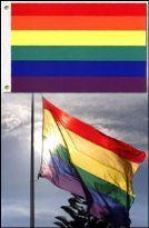 Regnbågsflagga lyxmodell - Large 91 x 152 cm