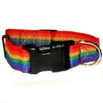 Regnbågsfärgad hundhalsband