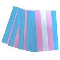 Klistermärke Trans Flagga