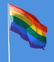 Regnbågsflagga - Printed