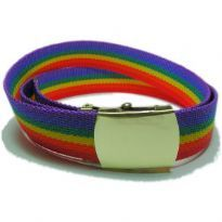 Rainbow Belt with Polished Buckle
